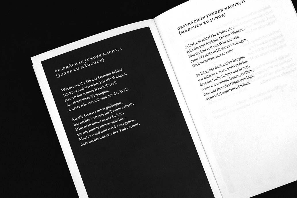 m2hs-DerdichteFuerst-Buch-02