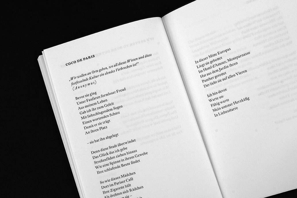m2hs-DerdichteFuerst-Buch-03