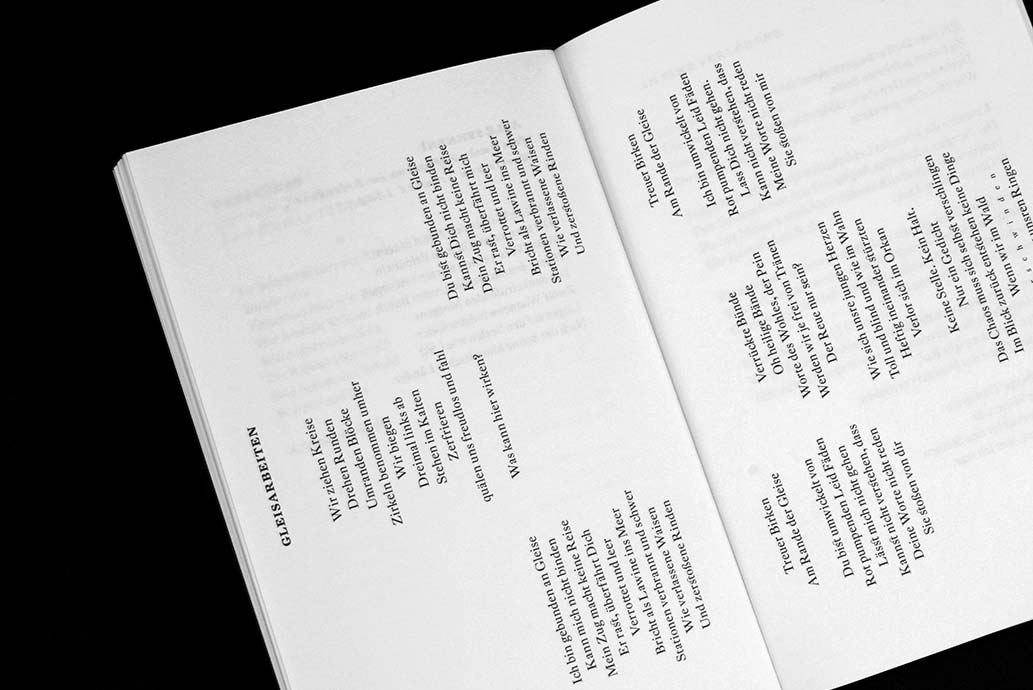m2hs-DerdichteFuerst-Buch-04